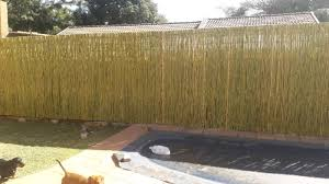 Wattle Stick And Reed Fence Rosebank Gumtree Classifieds South Africa 187696701