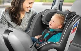 cars car seat laws queensland