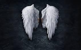 angel wings wallpapers top free angel