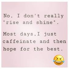 top funny witty quotes witty quotes humor coffee quotes