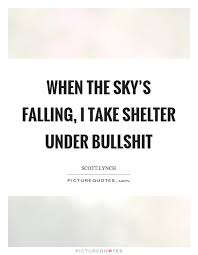 when the sky s falling i take shelter under bullshit picture quotes