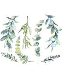 Amazing Sales On Watercolor Botanical Winter Plants Wall Decal By Wallmonkeys
