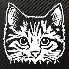 Amazon Com Peeking Cat Decal Sticker Custom Die Cut Vinyl Kitten Kitty Cute Automotive