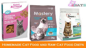 homemade cat food and raw cat food