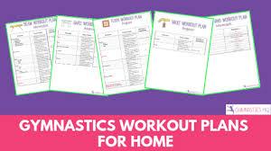 beginner gym program female pdf لم يسبق