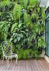 15 imaginative wall garden ideas for