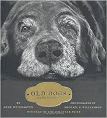 Amazon.com: Old Dogs: Are the Best Dogs (9781416534990 ...