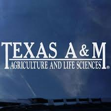 Texas A M Agriculture And Life Sciences Color Shock Decal 12th Man Shop The Official Store Of The Athletic Department