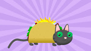 tacocat an animated video about