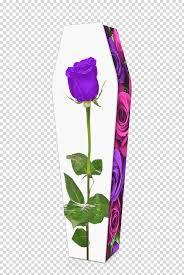 حديقة الورود زهرة الارجوان الورد الارجوانى أرجواني بنفسجي إناء