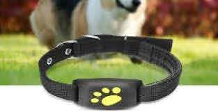 5 Best Gps Dog Fences Reviews Updated 2020 Dog Product Picker