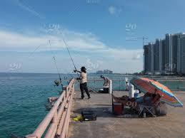 fishing sea summer ocean miami