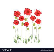 red flowers watercolor royalty free