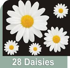 28 White Daisy Flower Decals Car Stickers Graphics Wall Window Decorations Ebay