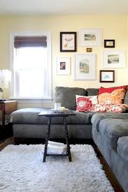 fluffy rugs in family room contemporary