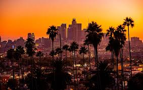 hd wallpaper city palm trees sunset