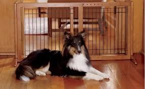 Don T Buy Indoor Pet Gates For Dogs Before Reading This