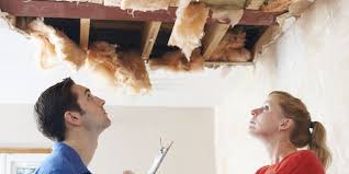 When to Hire a Public Adjuster for Mold Damage | Bulldog Adjusters