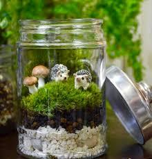 dish gardens miniature gardening