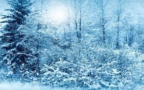 تحميل خلفيات المناظر الطبيعية في فصل الشتاء الثلوج الشتاء تساقط