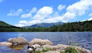 hd 1080p nature scenery video steemit