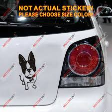 French Bulldog Bull Dog Decal Sticker Puppy Car Vinyl Die Cut Pick Size Bone Car Stickers Aliexpress