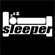 Funny Sleeper Car Sticker Decal Vinyl For Jdm Illest Drift Hoon Stance Lowered Ebay
