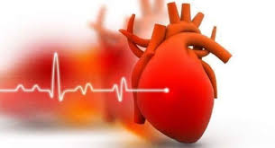 Simple lifestyle changes to boost your heart health in 2020