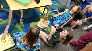 Students achieve science goals at annual fair – Paradise Post