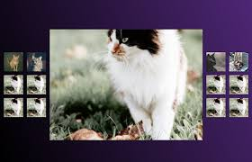 html photo gallery with source code