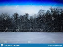 Winter Park With Fence Border Landscape Background Stock Photo Image Of Composition Blue 142978736