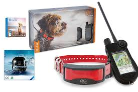 The 10 Best Dog Trackers In Uk 2020 Pet Gps Tracker Dog Cat Friendly Devices Rangersdog Com
