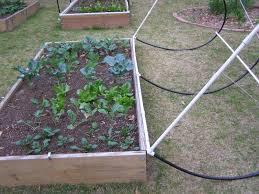 pin on verticle garden