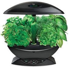aerogarden indoor herb garden with