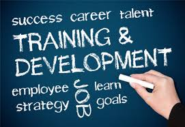 Image result for free images of training and development