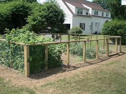 en coop fencing ideas with veggie