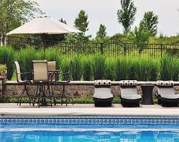 Awesome Pool Fence Designs Intheswim Pool Blog