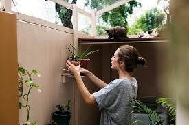vertical garden kit our top five