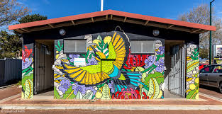 16 must see murals around perth perth