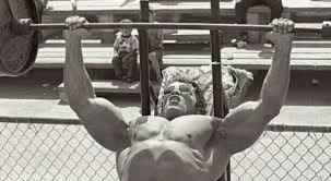 Celebrity And Athlete Bench Press Records Wiki