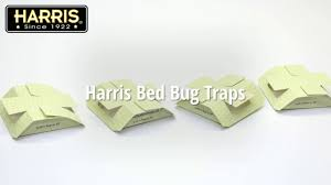 easy to use bed bug traps harris bed