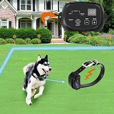 Electric Dog Fence Pet Containment System Aboveground Underground Wire Ip66 Waterproof And Rechargeable Collar Shock Tone Correction For 1 Dog Amazon Ca Pet Supplies