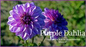 10 best funeral flowers ultimate