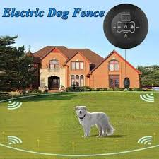 Electric Invisible Dog Fence Just For You Dog Accessories