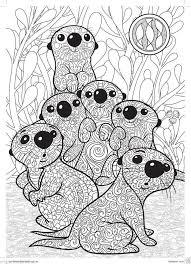 Otters Kleurplaten Mandala Kleurplaten Kleurboek