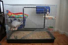 chinchillas as pets cages for pet