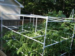 pvc pipe projects for gardeners