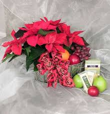 country fruit and poinsettia basket