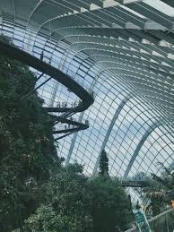 cloud forest and flower dome gardens