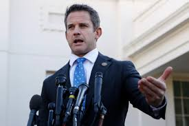 Rep. Kinzinger: 'It's time' for leaders to disavow QAnon - POLITICO